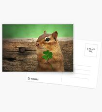 Irish Chippy Postcards