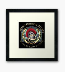 Lone Centurion Security Framed Print