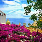 Colors of Positano by Barbara  Brown
