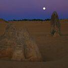 Pinnacles Desert Moon by Daniel Fitzgerald