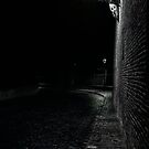 Alone in the dark street  by Julie Teague