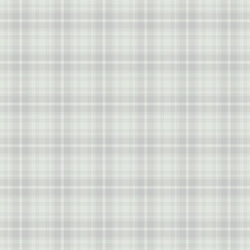 Pale Grey White Tartan Plaid Pattern Gray by harrizon