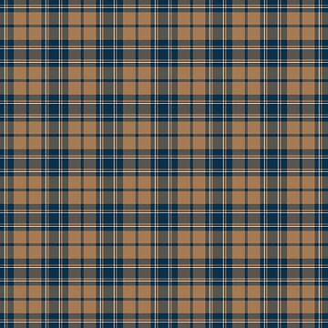 Wizard School Tartan Plaid Pattern  by harrizon
