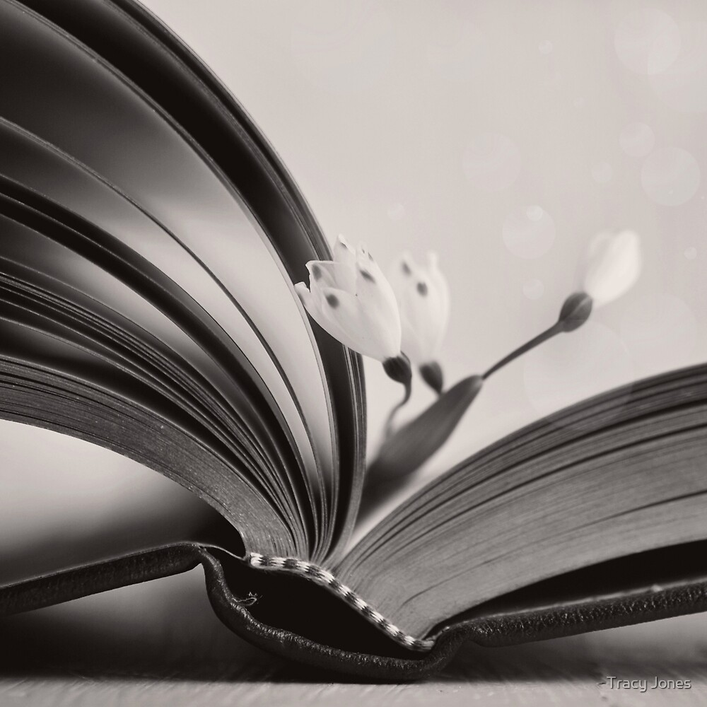 Dusty Pages by Tracy Jones
