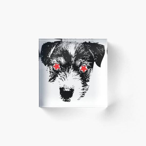 Puppy Jack Russell Terrier punk Acrylic Block