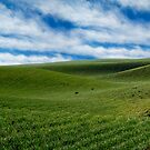 Rolling Farmland by atoth