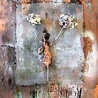 Minuet by Astrid Strahm