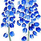 2 blaues abstraktes Traubenhyazinthenaquarell von ColorandColor