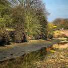 Maintaining The Canal by SimplyScene