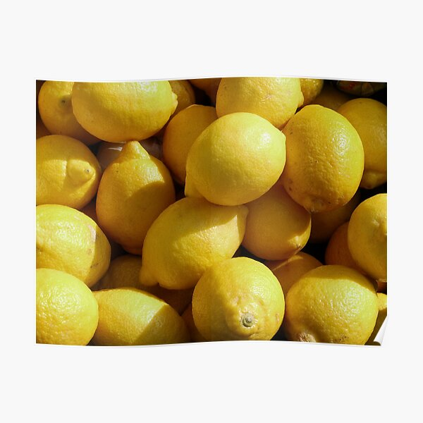 Food - lemons Poster