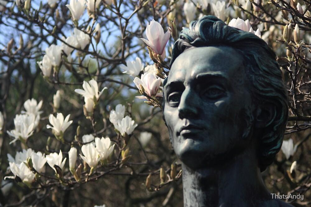 Bust in St Steven's Green, Dublin. by ThatsAndy