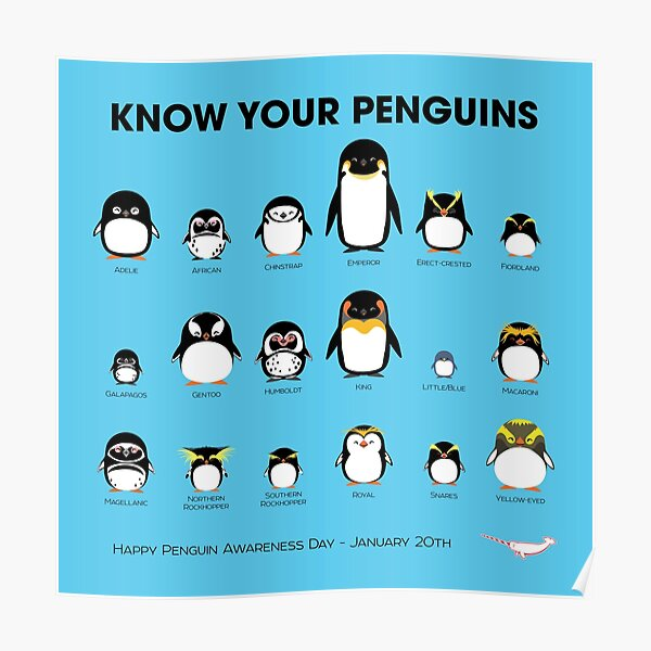 Know Your Penguins Poster