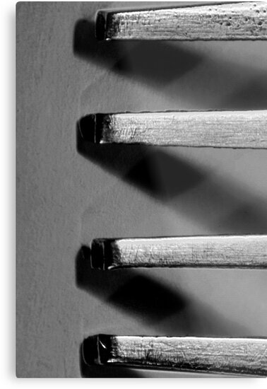 Fork by riotphoto