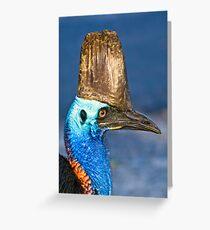 Cassowary - Etty Bay far north Queensland Greeting Card