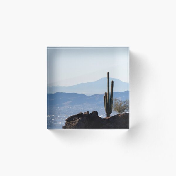 Camelback Cactus Acrylic Block