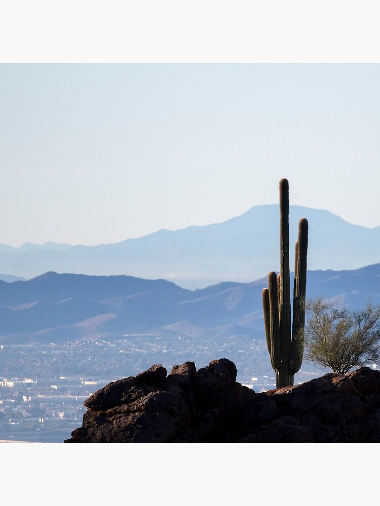 Camelback Cactus by kmck96