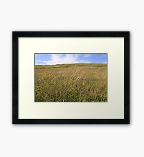 Gold Rush Framed Print