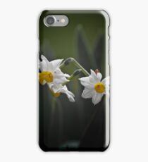 Jonquils iPhone Case/Skin