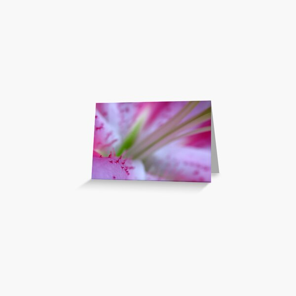 G July Lily Greeting Card