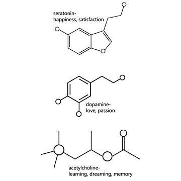 Aprende, ríe, ama las moléculas de tffindlay