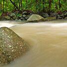 Cedar Creek Flood Flow by David de Groot