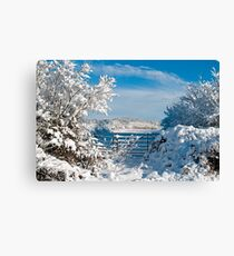 Winter Countryside 1 Canvas Print