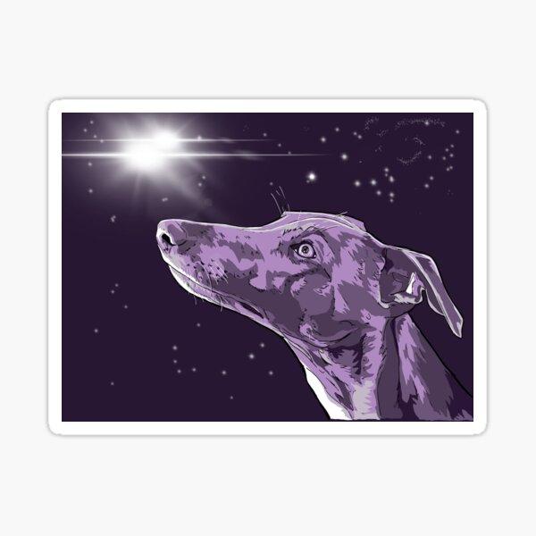 Stargazing Whippet Sticker