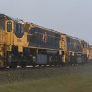 Misty Morining Train by Steve Bass