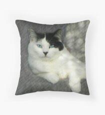 Purr Texture Throw Pillow