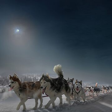 Snow Caravan by izenin