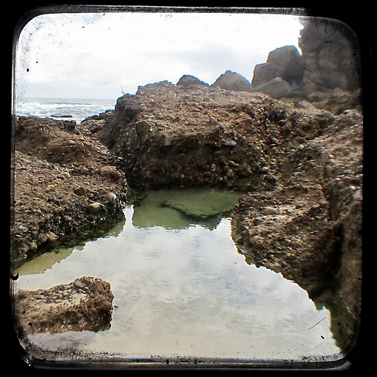 Rockpool - Through The Viewfinder (TTV) by Kitsmumma