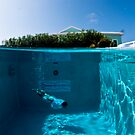 Diving the Hotel Pool by muzy