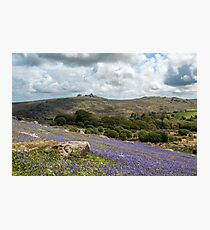 Holwell Bluebell Lawns Dartmoor Photographic Print
