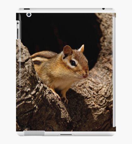 Chipmunk in tree hole - Ottawa, Ontario iPad Case/Skin