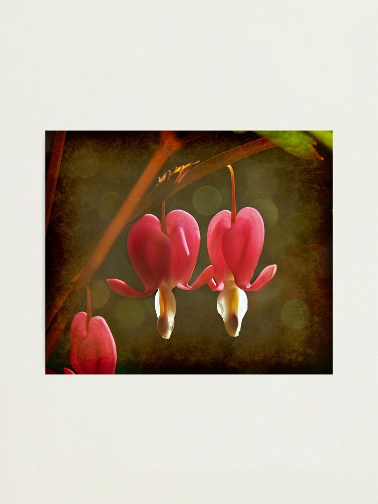 Alternate view of Touching Hearts Photographic Print