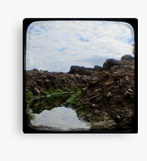 Rockpool - Through The Viewfinder (TTV) #2 Canvas Print