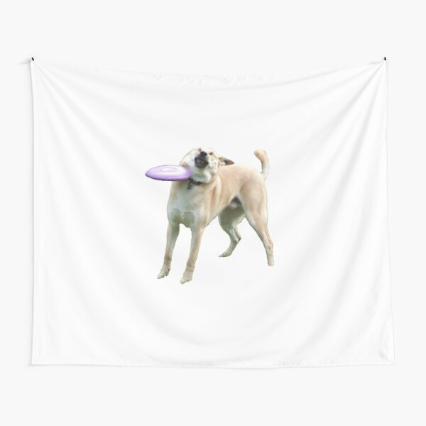 Frisbee Doge Tapestry