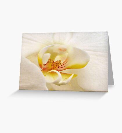 Lemon Meringue.. Greeting Card