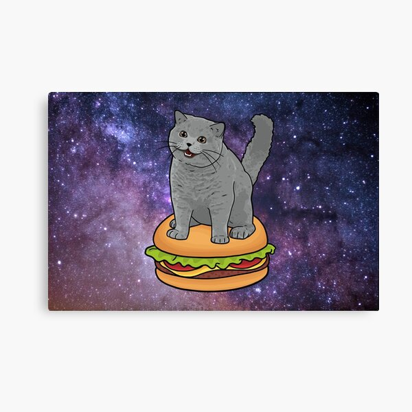 I CAN HAS CHEEZBURGER chubby meme cat in space Canvas Print