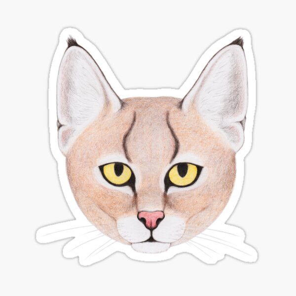 Jungle Cat Sticker