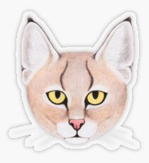Jungle Cat Transparent Sticker