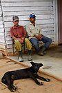 Farm Dog & workers, Vinales, Cuba by David Carton
