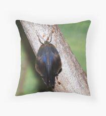 Butterfly VII Throw Pillow