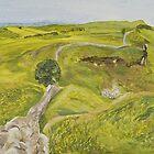 Sycamore Gap by Gillian Cross