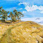 Hadrian's Wall Country by Gillian Cross