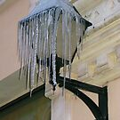 Icy Lantern by Christine  Wilson