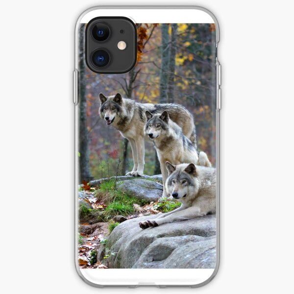 Timber Wolves in Autumn iPhone Soft Case