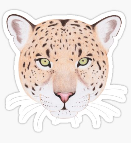 African Leopard Glossy Sticker