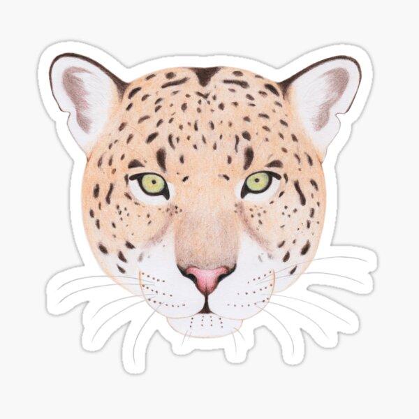 African Leopard Sticker