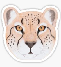 African Cheetah Glossy Sticker